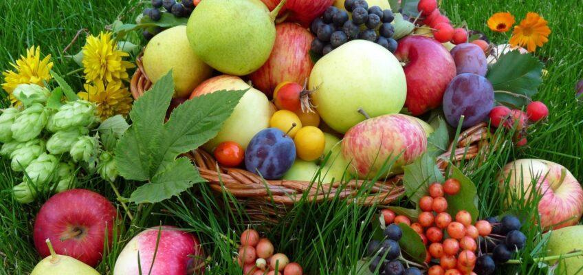 Освящение плодов нового урожая